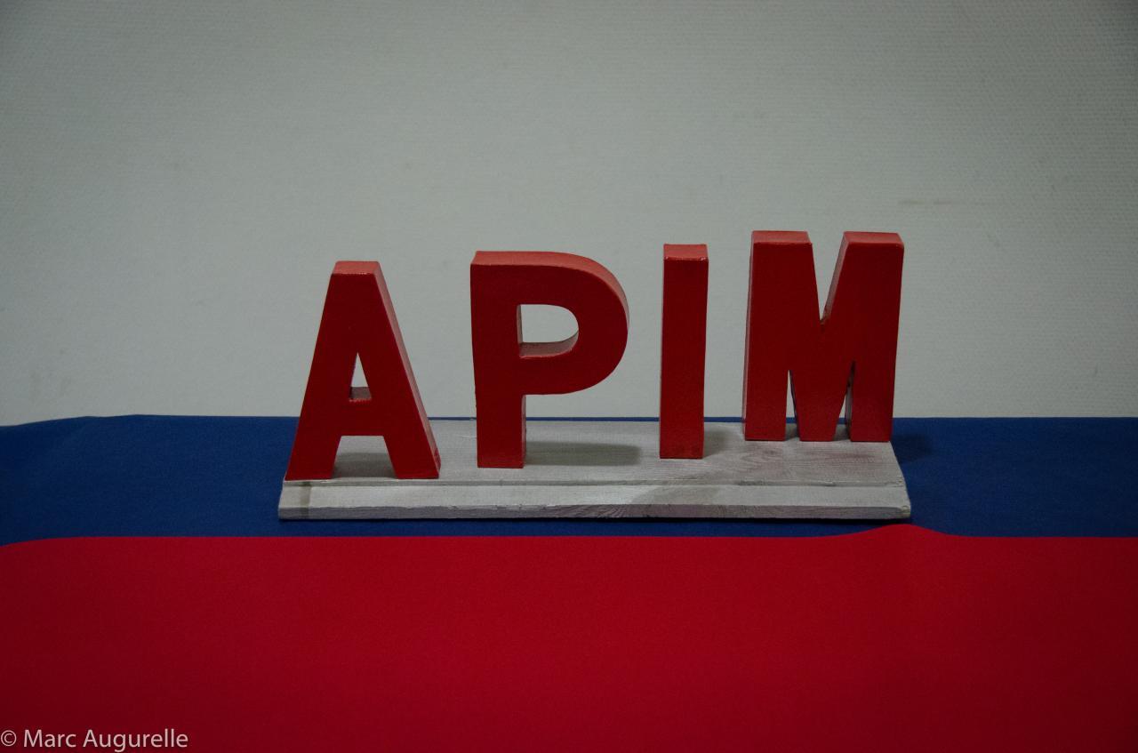 Première matinée de formation by APIM-20