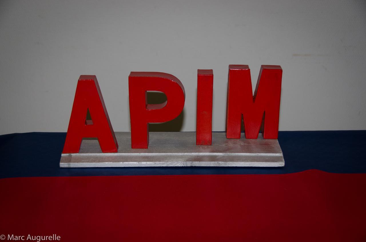 Première matinée de formation by APIM-21